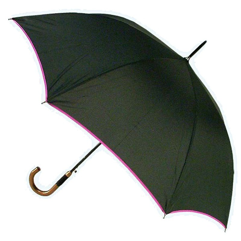 Dámský deštník 4093 Fialový lem